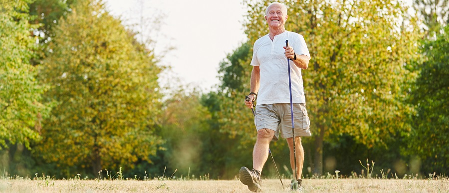 Walking: Your Way to Physical Therapy Success